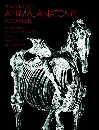 An Atlas of Animal Anatomy for Artists By Ellenberger, Wilhelm